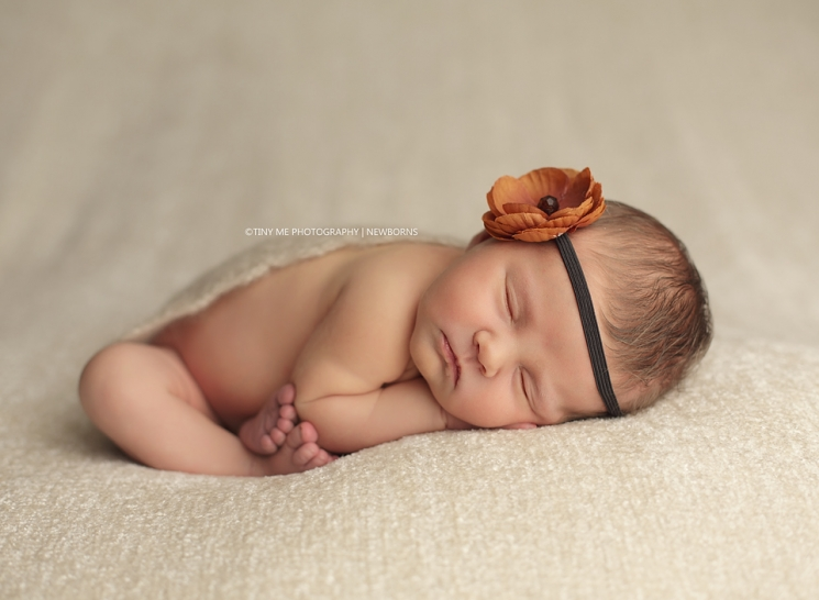 Eagan Minnesota newborn wearing flower headband prop