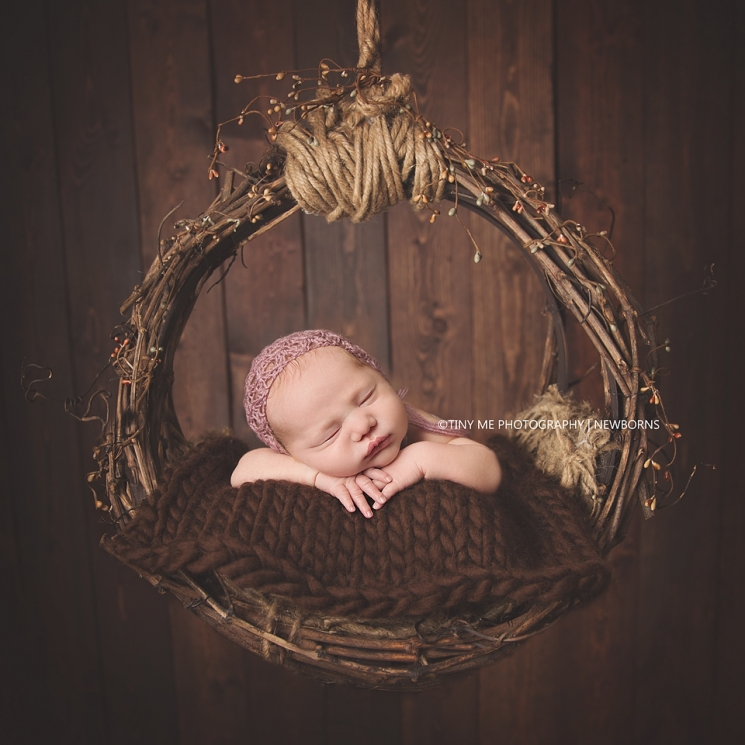 Minnesota newborn baby girl hanging nest prop